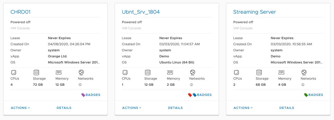 VMware Cloud Director 10.1: Mittels Badges markieren Sie VMs und vApps zu Organisationszwecken mit unterschiedlichen Farben.