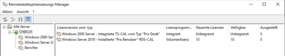 Remotedesktoplizenzierungs-Manager: Korrekt installierte Lizenzen werden in der Lizenzliste angezeigt.